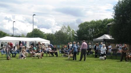 Village Show 2011